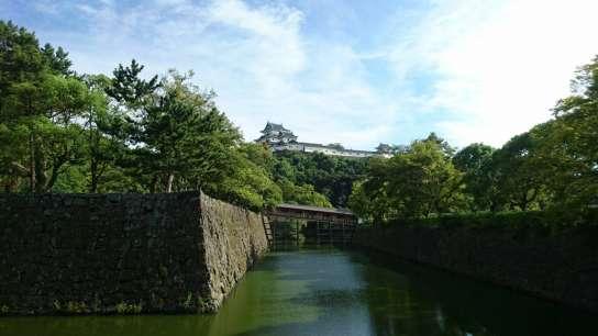 和歌山城の忍者が選ぶ、和歌山城の地味にすごいポイント3選!